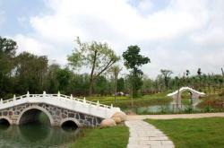 洪泽湖森林公园