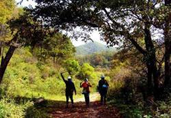关山森林公园景点介绍