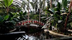天津热带植物观光园景点介绍