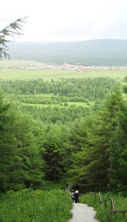 阿尔山国家森林公园景点介绍